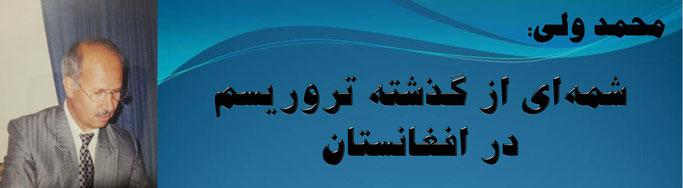 حقیقت، محمد ولی: شمهای از گذشته تروریسم در افغانستان