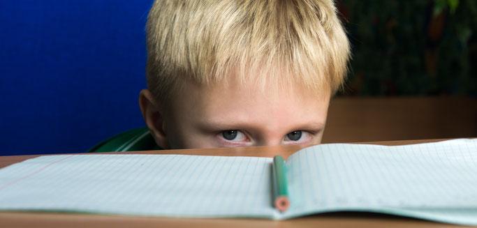 Hilfe bei Lernschwierigkeiten, Konzentrationsprobleme, fehlende Impulskontrolle, LRS, ADHS, ADS, Verhaltensauffälligkeiten, Reflexintegration in Dresden