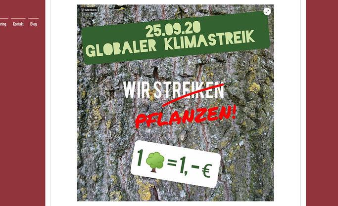 wilstedt