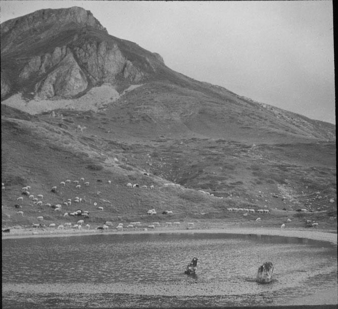 Markgraf - Korab - Stani i Shehit (1800 m)
