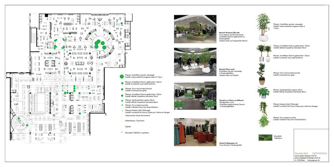 Innenraumbegrünung Bepflanzungplan