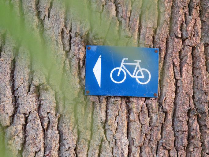 Radtouren rund um das Hotel Waldesruh in der Region Bad Bevensen