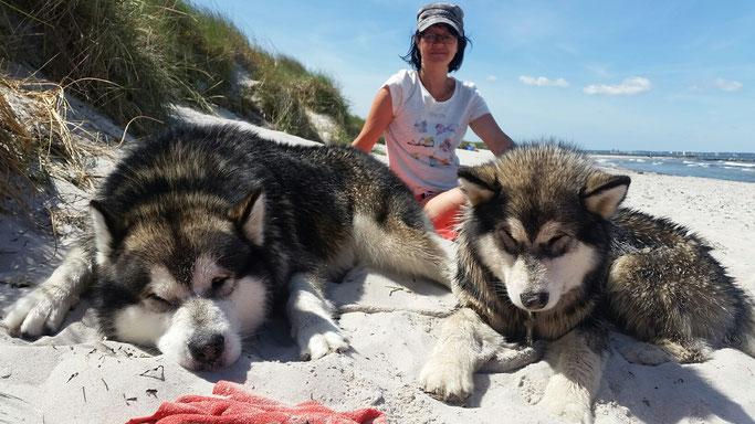 Ostseeurlaub 2017 genüsslich am Strand rumliegen