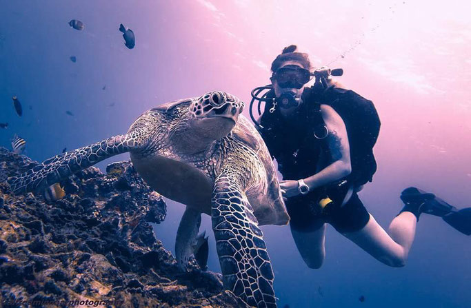 Scuba diving with Turtles on Gili T