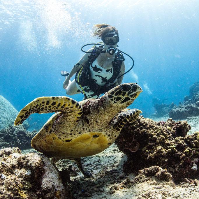 where to scuba dive in Gili T