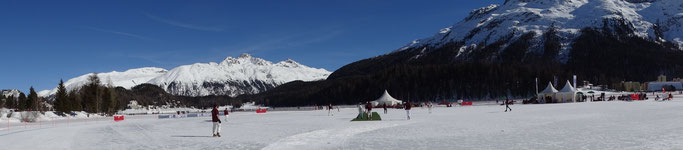 Panorama of the cricket field and the lake (COI, 14-16.2.2019)
