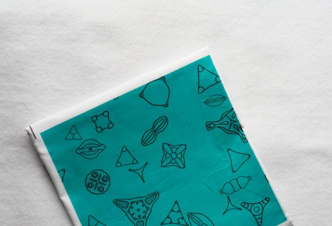 Neue und alte Muster auf Stoff - Kieselalgen auf türkis - Zebraspider DIY Anti-Fashion Blog