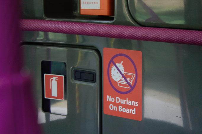 Genähte Kleinigkeit und große Reise - Bus in Singapur - Zebraspider DIY Anti-Fashion Blog