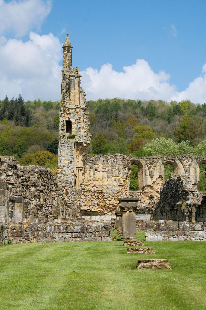 Die Ruinen der Bylands Abbey - Laienbrüder Gebäude und Westfront seitlich - Zebraspider DIY Anti-Fashion Blog