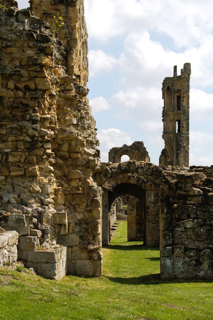 Die Ruinen der Byland Abbey - Klosterruine - Zebraspider DIY Anti-Fashion Blog