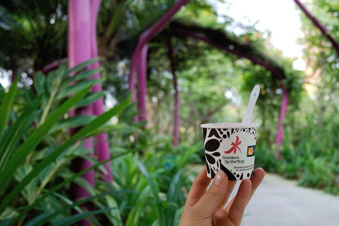 Genähte Kleinigkeit und große Reise - Singapur Gardens by the Bay Eis - Zebraspider DIY Anti-Fashion Blog