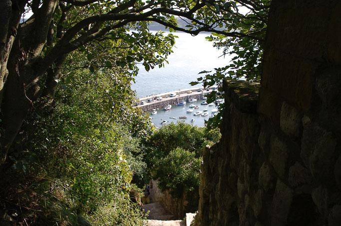 (M)ein Tag am Meer - Scarborough Hafen und Burgmauer - Zebraspider DIY Blog