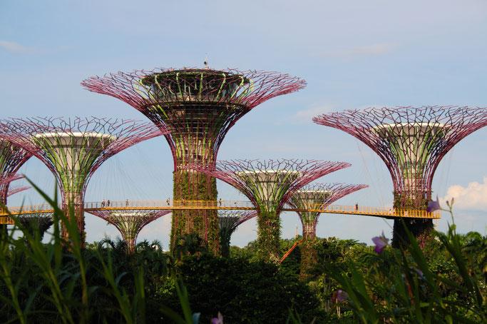 Genähte Kleinigkeit und große Reise - Singapur Gardens by the Bay Bäume - Zebraspider DIY Anti-Fashion Blog