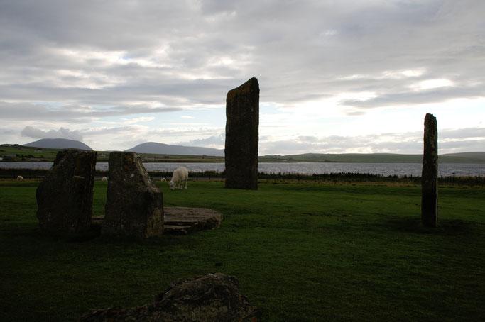 Urlaub Orkney Inseln - Steine von Stenness - Zebraspider DIY Anti-Fashion Blog