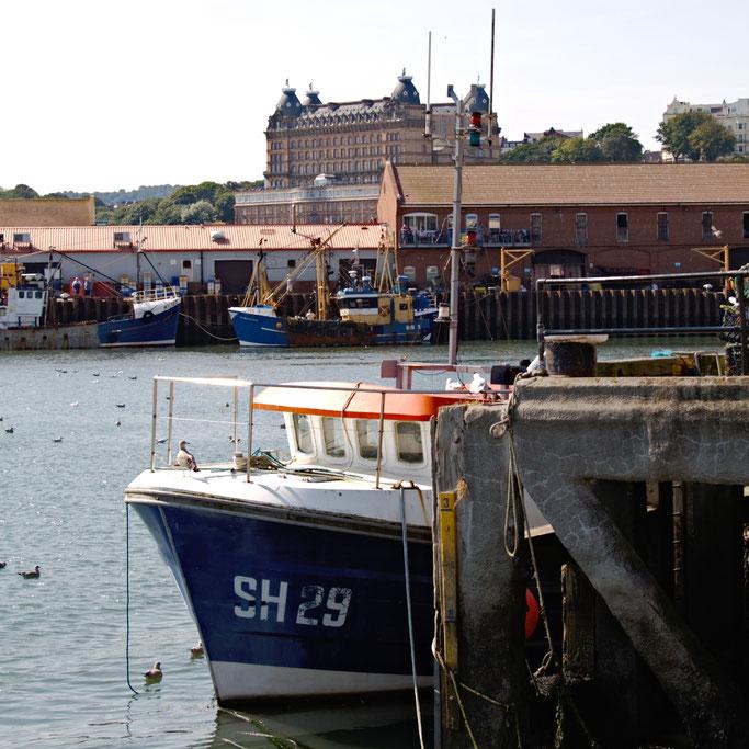 (M)ein Tag am Meer - Scarborough Hafen und Schloß - Zebraspider DIY Blog