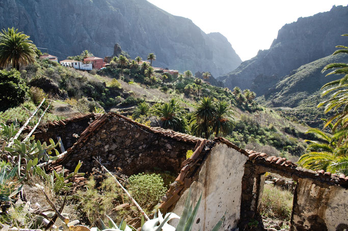 Leben und Vergehen - Teneriffa Fotos - verlassenes Haus Masca - Zebraspider DIY Anti-Fashion Blog