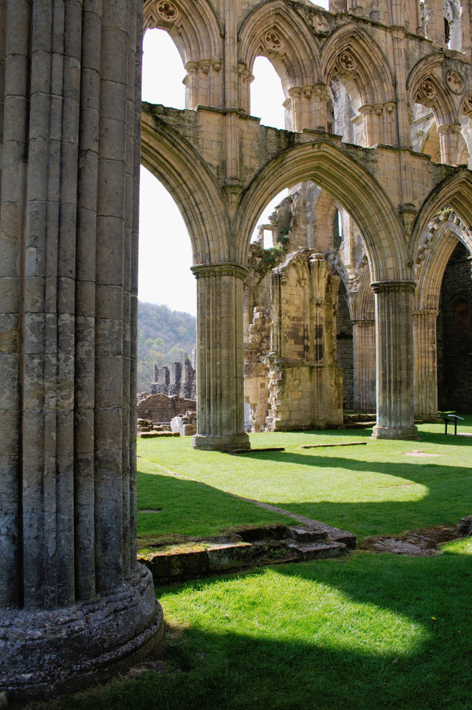 Rievaulx Abbey - Ruinen Fotos Teil 3 - Zebraspider DIY Anti-Fashion Blog