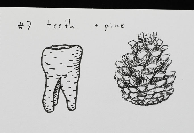 How Inktober 2019 went so far - 7 teeth (tooth) and pine cone - Zebraspider DIY Anti-Fashion Blog