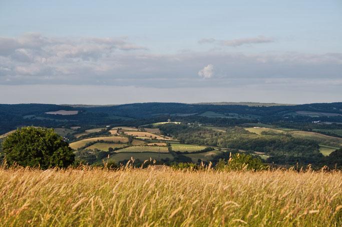 Zum Urlaub nach Cornwall - Landschaft in Devon - Zebraspider DIY Anti-Fashion Blog