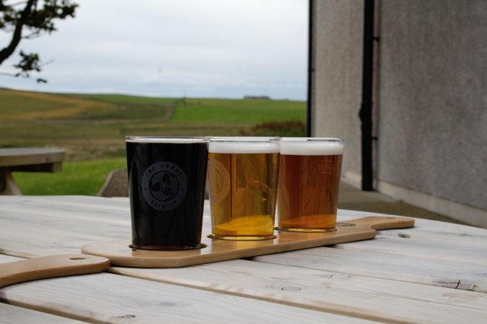 Urlaub Orkney Inseln - Brauerei Bierverkostung - Zebraspider DIY Anti-Fashion Blog
