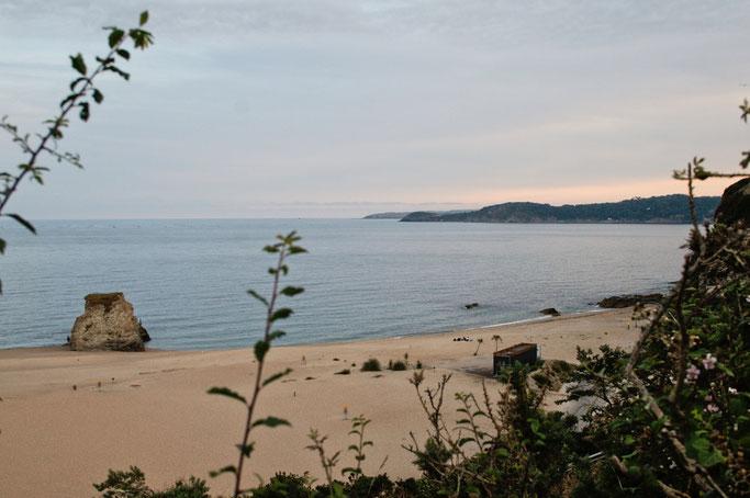 Zum Urlaub nach Cornwall - Strand Carlyon Bay - Zebraspider DIY Anti-Fashion Blog