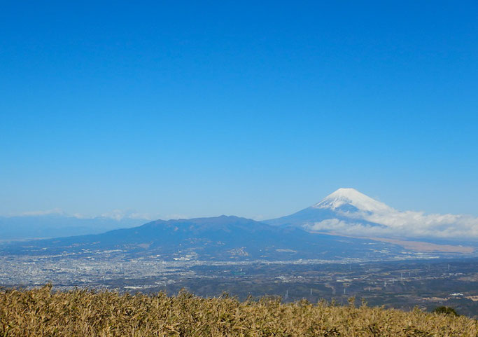 富士山・愛鷹山