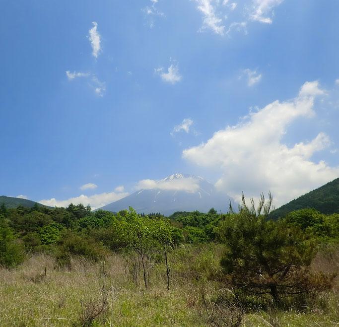 野尻草原より富士山