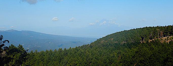 達磨山と富士山