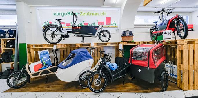 Cargo e-Bikes in der e-motion e-Bike Welt Dietikon