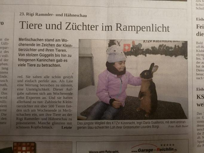 Auf der Titelseite im Freien Schweizer
