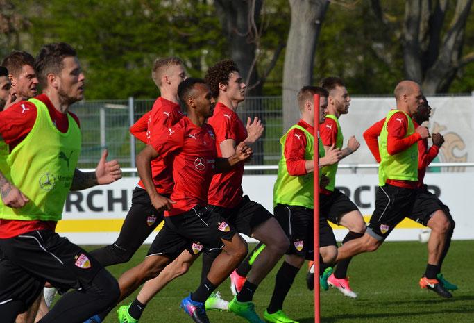 Der VfB Stuttgart sprintet zum Saisonendspurt. (Foto: eigene Aufnahme)