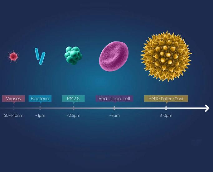 Viren Bakterien Zellen Staub