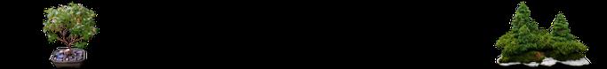 Bonsaigalerie
