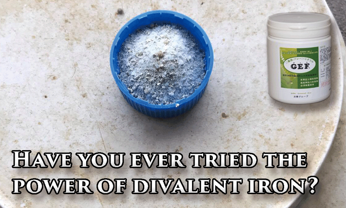 Have you ever tried the power of Divalent Iron?