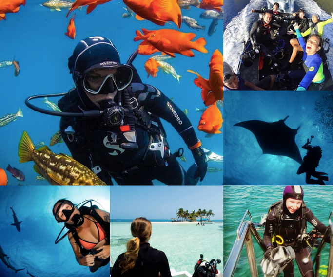 Best scuba dive blogs