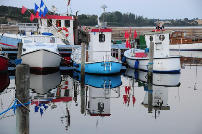 Muffe, die Freundin von Ballerbude. Nebenerwerbsfischer in Høruphav