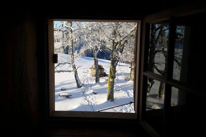 Yoga & Schneeschuhwandern Steiermark Winter 2021