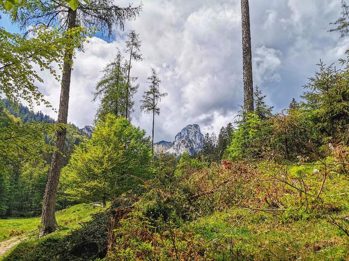 Hörndlwand Chiemgau