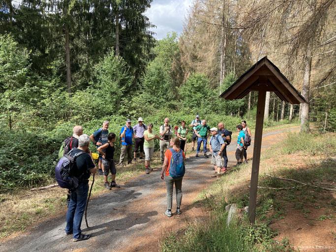 Wandern für Welt-Entdecker - DWV-Fortbildung in Marienstatt