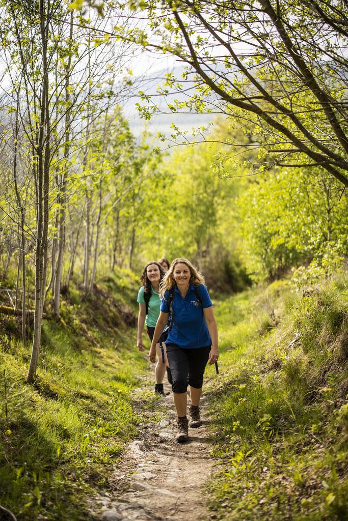 Foto: Tourismus Brilon Olsberg, sabrinty