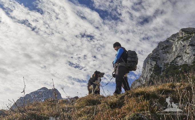 mein wanderhund; wandern mit Hund; leine beim wandern mit hund