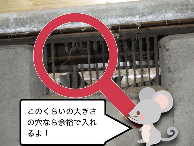ネズミと破れた通気口の格子