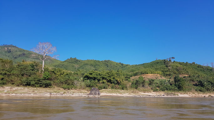 Fahrt auf dem Mekong mit dem Slowboat