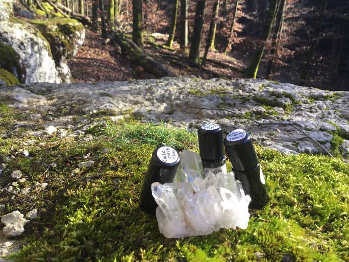 Homöopathi im Wald, Globuli im Wald, Kristall, Frauenpraxis Rut Mellenthin