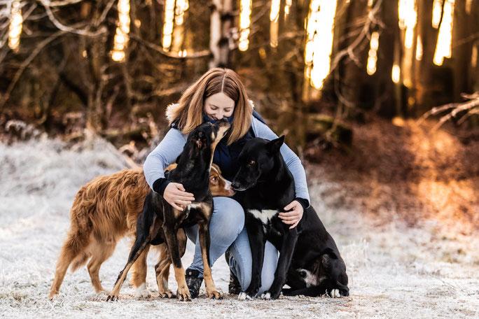 Arwen, Chilli, Shadow