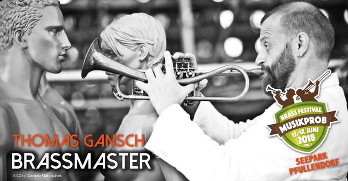 Thomas Gansch auf dem Brass & Blasmusikfestival Seepark Pfullendorf 15.-17. Juni 2018