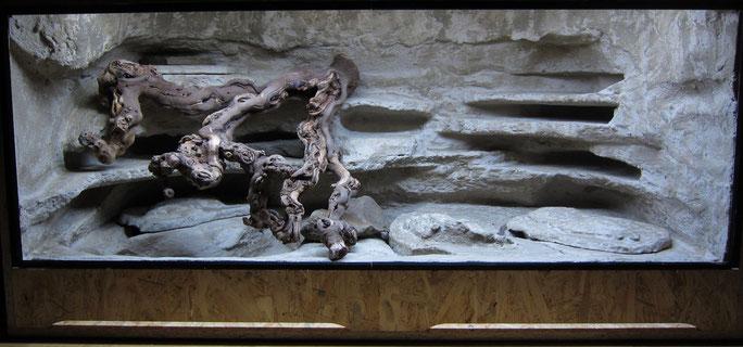 Leopardgecko Terrarium Rückwand Quetschspalten