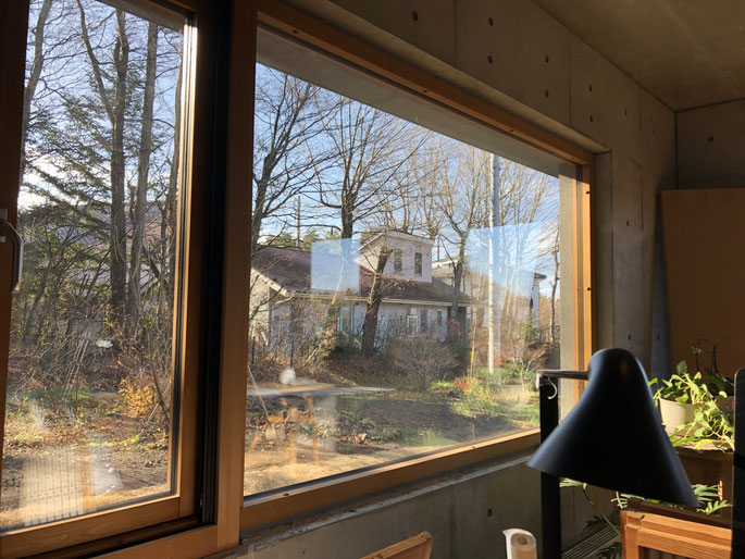 11月25日の窓の外。すっかり葉が落ちました。