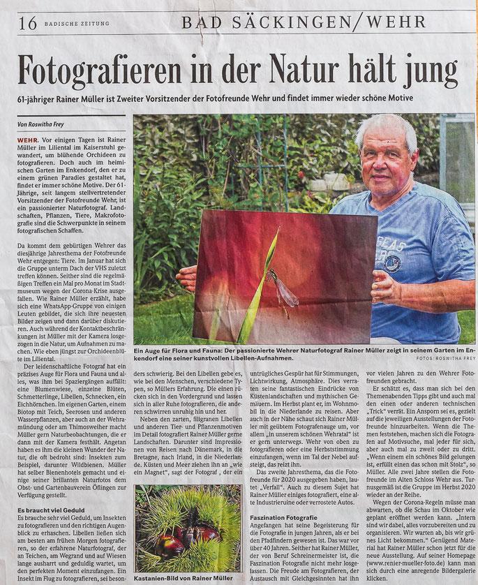 erschienen Bad. Zeitung 26.Juni 2020
