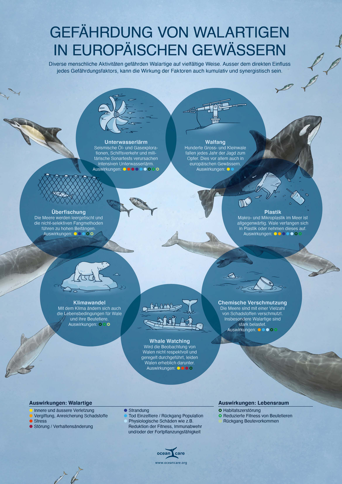 Infografik Kumulative Gefahren im Meer © Michael Stünzi